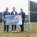 Agrar-Photovoltaik-Anlage